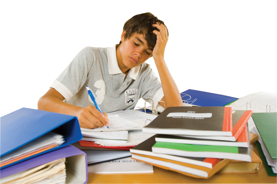school coursework help School homework help children hate homework kids become tired enough during school day and after it they have to deal with home tasks, write essays and papers, solve tests and making exercises.